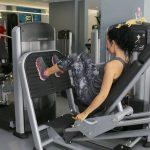 CrossFit : une activité sportive à découvrir